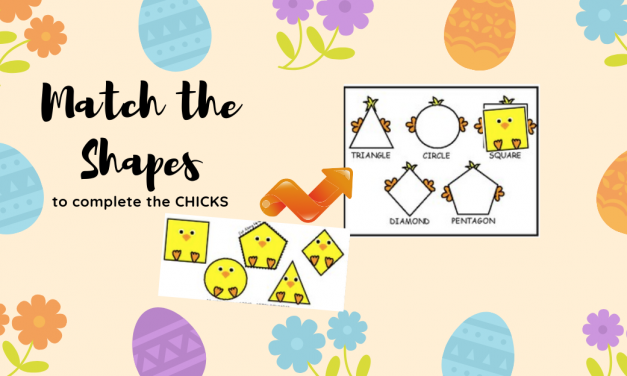 Chick Shapes Sorting Puzzle