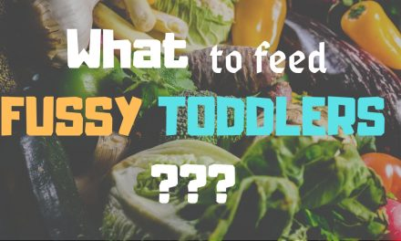 Food for Fussy Toddlers