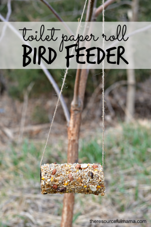 Easy Toilet Paper Roll Bird Feeder Craft