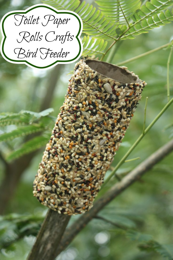 Recycled Bird Feeders using Toilet Paper Rolls
