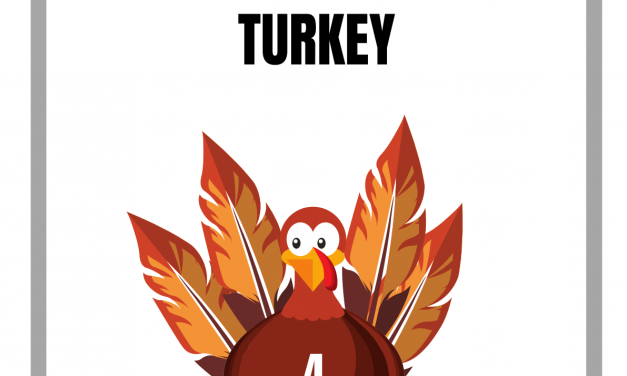 Make A Turkey Preschool to Class 1 Activity