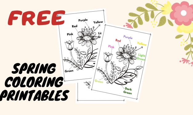 Spring FREEBIE – Flowers Coloring Templates